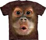 Big Face Zoo Animal T-Shirts