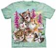 Cat T-Shirts & Kitten Shirts